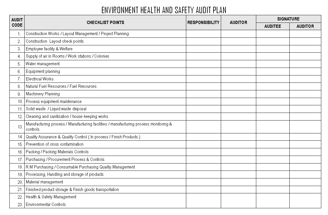 Environment health and safety audit plan format samples for Health and safety review template