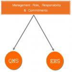 Management Role in QMS, EHS