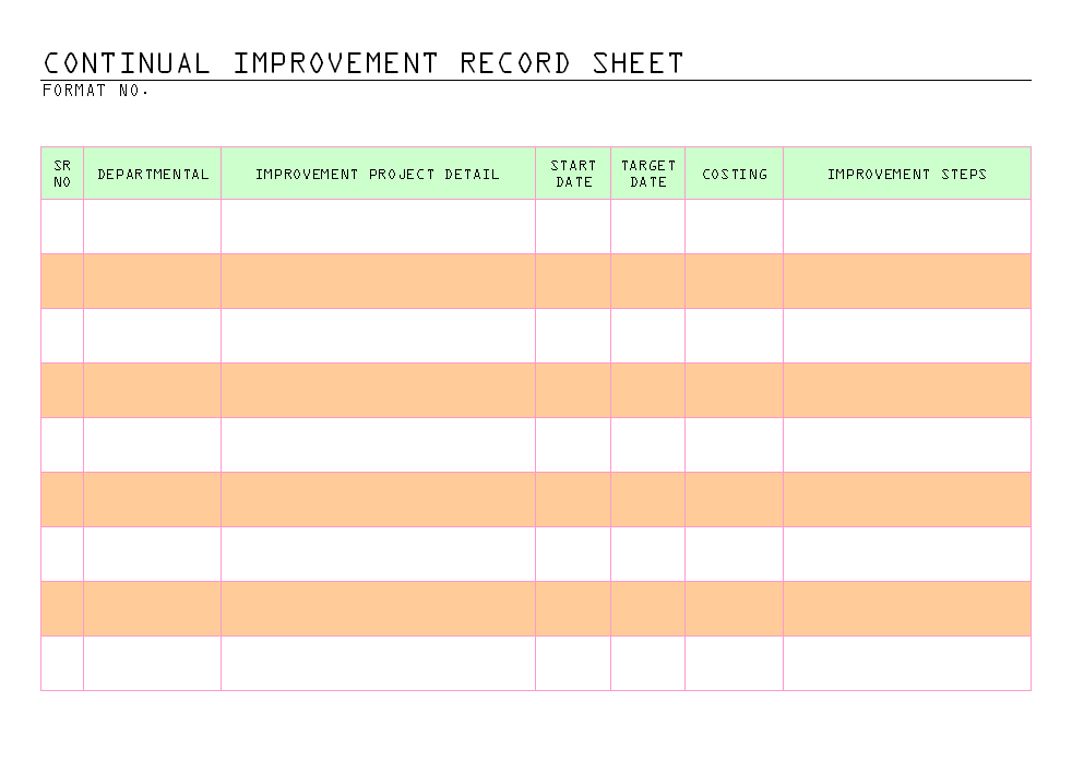 Continual improvement record sheet -