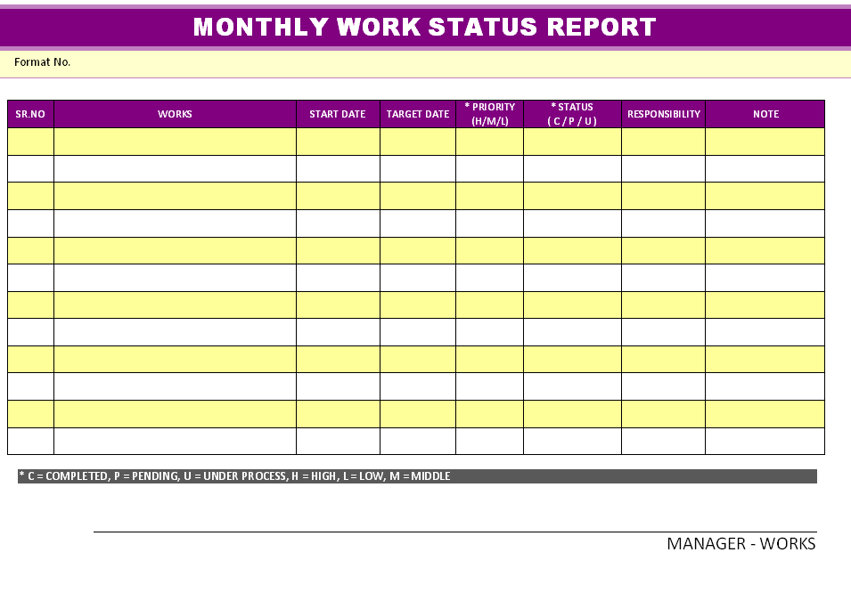 work status report template monthly – Monthly Report Template Word