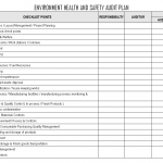 Environment health and Safety Audit Plan