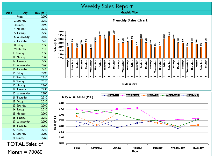 weekly activity report samples