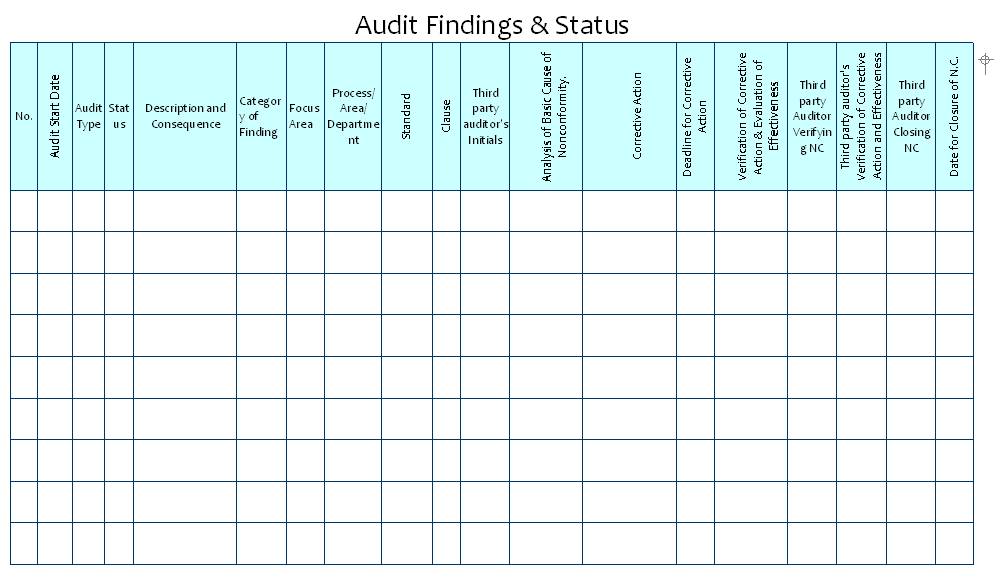 How to maintain audit findings & status?