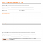 Lost / Damage instrument slip